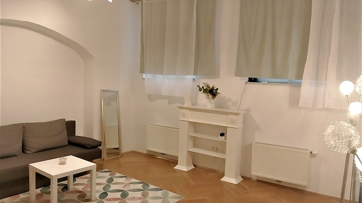 2 room apartment in Wien - 1. Bezirk - Innere Stadt, furnished, temporary